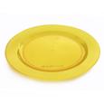 assiette jetable colorée